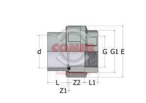AUN84-1-300x212 AUN84 - Bocchettone con O-Ring incollaggio/filettato